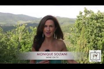 Embedded thumbnail for Po Toskani: njaboljša vina Toskane