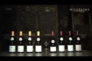 Embedded thumbnail for Vina Louis Latour - tradicija in kvaliteta 2/2